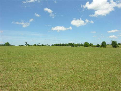 Reduced 819 Acres On Brier Creek : Waynesboro : Burke County : Georgia