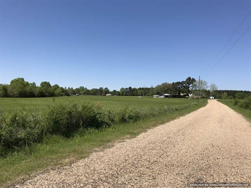 Beautiful Farm Land With 30 Acres : Wesson : Lincoln County : Mississippi