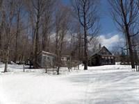 Kasson Road Forest : Topsham : Orange County : Vermont