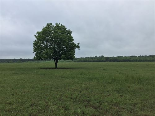 Land Royse City, Tx, Development : Royse City : Hunt County : Texas