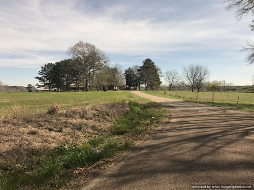 Beautiful 11 Acre Hayfield : Wesson : Lincoln County : Mississippi