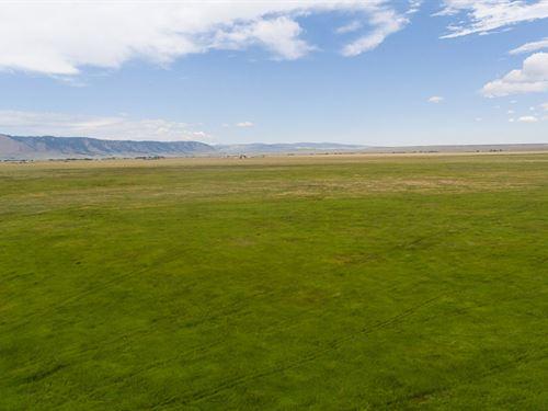 Cow Camp Ranch : Laramie : Albany County : Wyoming