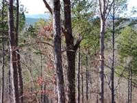 Cherry Grove Tract : Ball Ground : Cherokee County : Georgia
