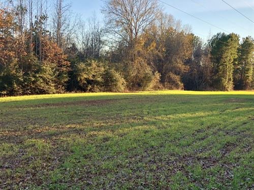 105 Acres In Knoxville, Al : Knoxville : Greene County : Alabama