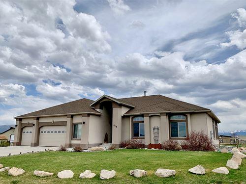 Vigilante Equine Estate : Butte : Silver Bow County : Montana