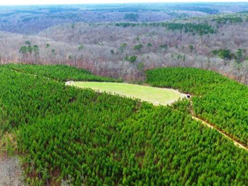 Sale Pending Bankhead Forest 88 : Mount Hope : Franklin County : Alabama