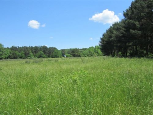 68.98 Acres In Tippah County In Rip : Ripley : Tippah County : Mississippi