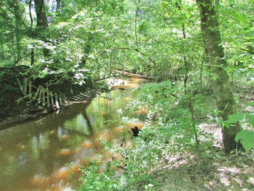 247 Acres Timberland / Recreation : Collinsville : Kemper County : Mississippi