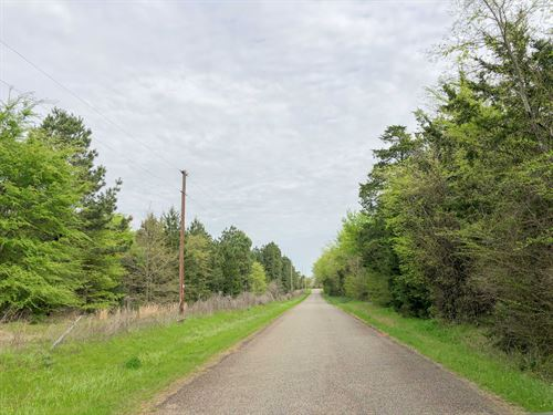 141 Acres Cr 2115 Tract 1011 : Hughes Springs : Morris County : Texas