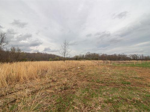 Waibel Farm Rd, 49 Acres : Coolville : Athens County : Ohio