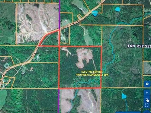 Hunting Property 45 Acres Franklin : McCall Creek : Franklin County : Mississippi