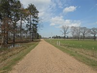 Land 7.9 Acres Lincoln County : Smithdale : Lincoln County : Mississippi