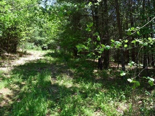 New River Land Auction in Galax VA : Galax : Grayson County : Virginia