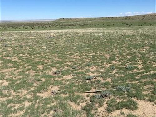 Great Off Grid Property 160 Acres : Trinidad : Las Animas County : Colorado