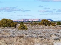 Ranch Has Access To National Forest : Ramah : Cibola County : New Mexico