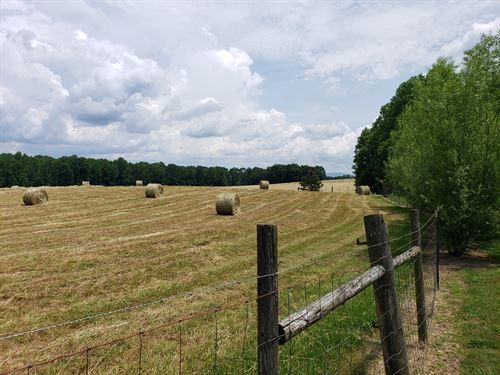 Beautiful Farm, Develop Potiential : Ellijay : Gilmer County : Georgia