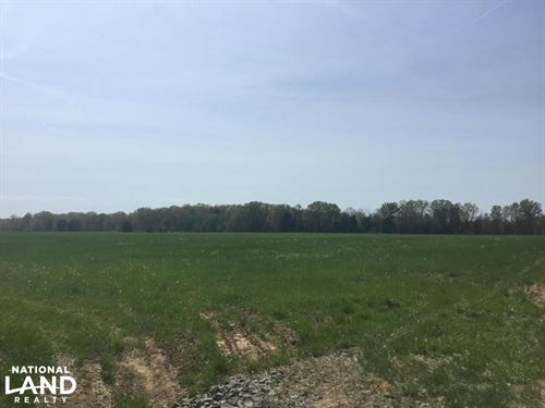 99 Acres Homesites, Hunting, Horse : Catlett : Fauquier County : Virginia