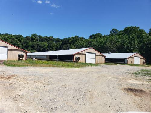 14 House Poultry Broiler Farm : Ellijay : Gilmer County : Georgia
