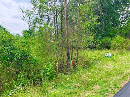 Land, Builders,Investors,New Homes : Arkadelphia : Clark County : Arkansas