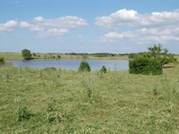 Acreage, Ponds, Pasture Freestone : Fairfield : Freestone County : Texas