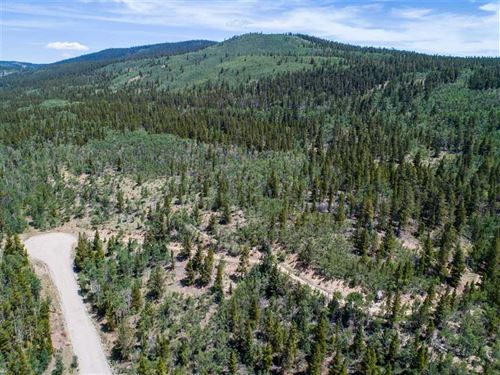 Price Reduced To Sell, 10.49 Acre : Alma : Park County : Colorado