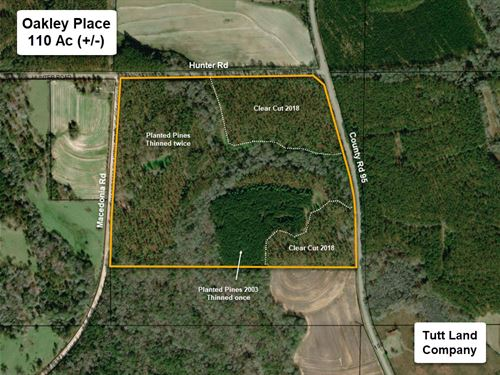 Hunting & Timber Tract Near Dothan : Columbia : Houston County : Alabama