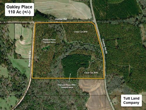 Hunting & Timber Tract Near Dothan : Columbia : Houston County : Alabama