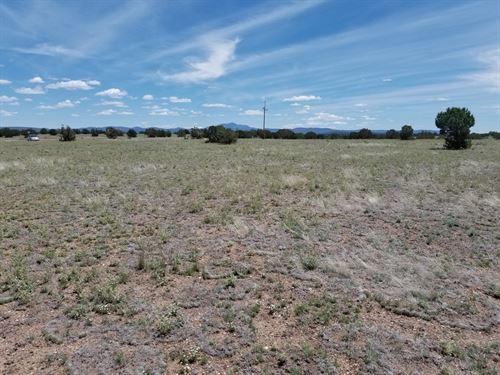 Surveyed, Great Access, Trees, Nice : Ash Fork : Yavapai County : Arizona