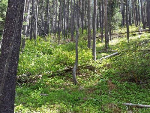 Heaven In The Little Belts : Neihart : Cascade County : Montana