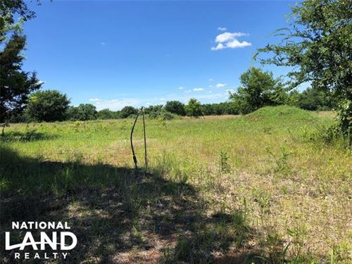 Hunting Privacy : Beggs : Okmulgee County : Oklahoma