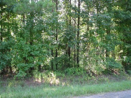 Vineland 170 : Pine Hill : Marengo County : Alabama