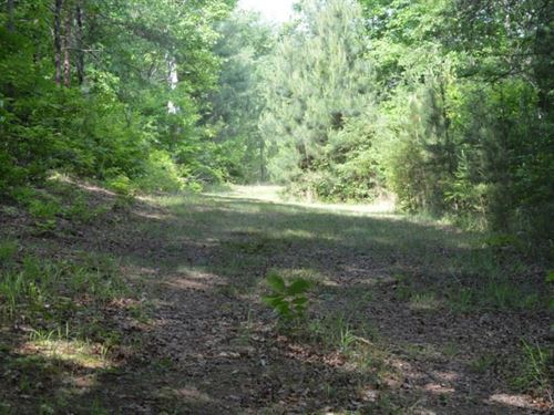 6.0 Acres In Walhalla : Walhalla : Oconee County : South Carolina
