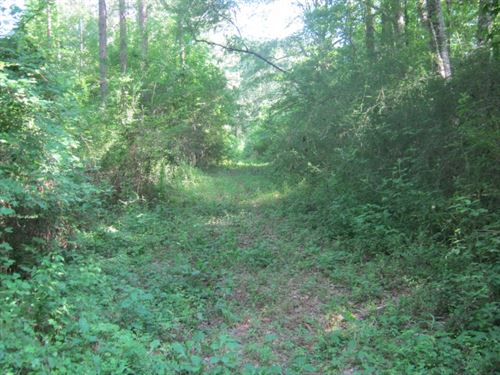 Log Cabin Rd, Tylertown,Ms : Tylertown : Walthall County : Mississippi