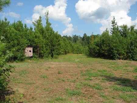 Old Texas 66 : Beatrice : Monroe County : Alabama