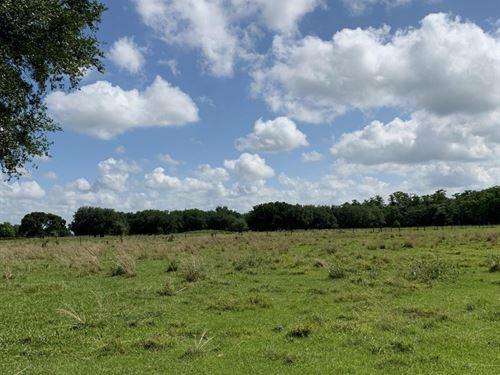 Arcadia Prestine Pastureland Ranch : Arcadia : Desoto County : Florida