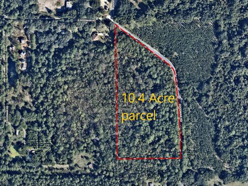 South Goodman Road 10.4 Acres : Kissimmee : Osceola County : Florida