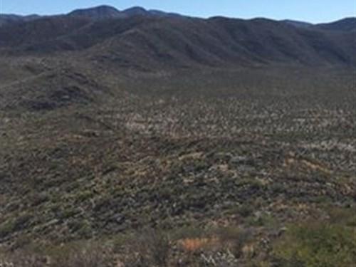 16,309 Deeded Acres Ranch : Quimica Del Rey : Mexico