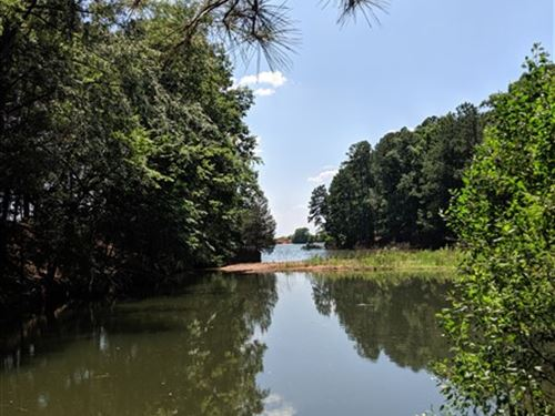 8.62 Acres, Fairfield County, Sc : Jenkinsville : Fairfield County : South Carolina