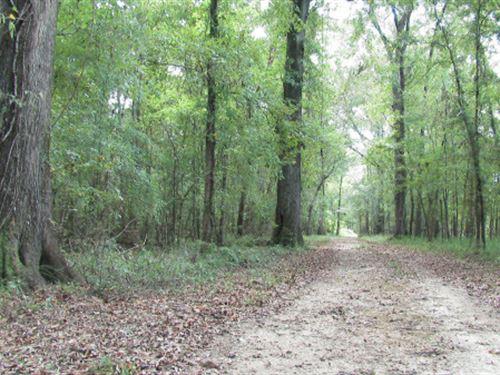 Ft, Pierce Tract : Bay Minette : Baldwin County : Alabama