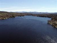 Neal Pond Forest : Lunenburg : Essex County : Vermont