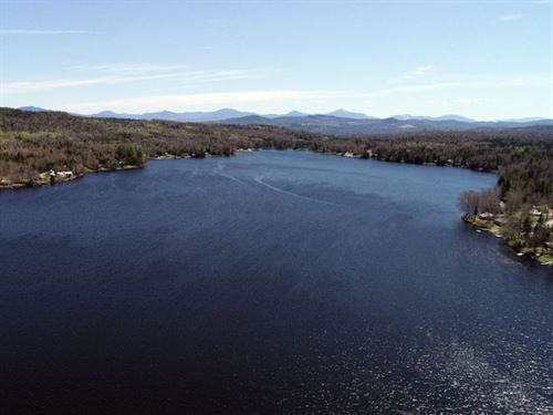 Neal Pond Forest : Lunenburg : Essex County : Vermont