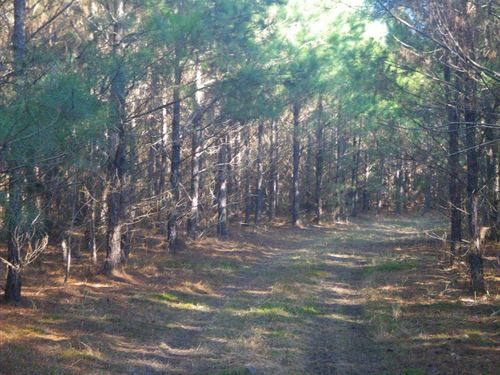 Letohatchee Tract, Lowndes Co : Letohatchee : Lowndes County : Alabama