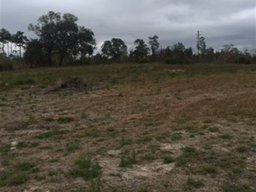 Owner Financing/Growing Area : Weeki Wachee : Hernando County : Florida