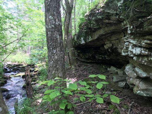 59-012 Blount Mountain 80 : Remlap : Saint Clair County : Alabama