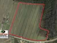 34 Acre Farm And Sand Mine For Sal : Columbia : Tyrrell County : North Carolina