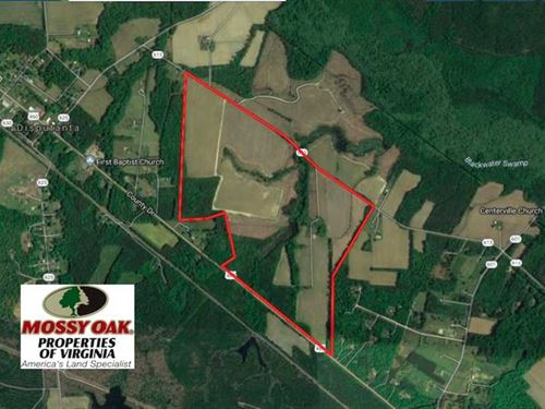 276 Acres of Farm And Hunting Land : Disputanta : Prince George County : Virginia