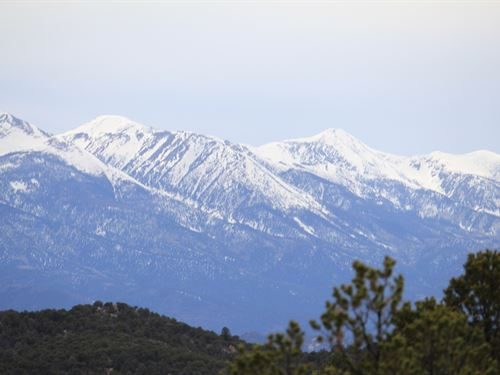 35+ Acres Ross Springs Ranch : Westcliffe : Fremont County : Colorado