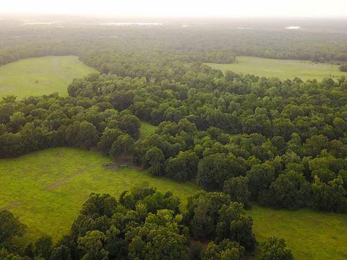 Premiere Hunting Ranch, River : Oakwood : Freestone County : Texas