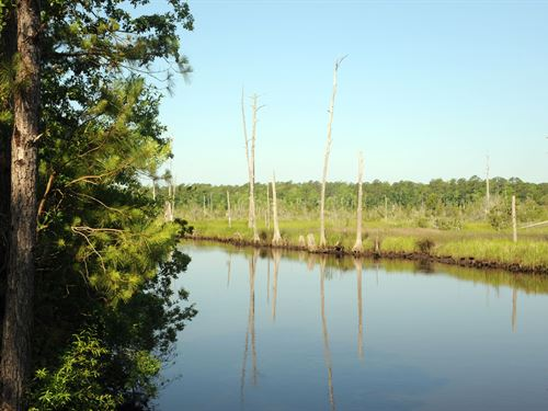 Brunswick Co Nc Riverfront Acreage : Supply : Brunswick County : North Carolina