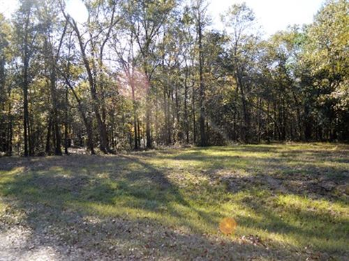 Beautiful Property On Private Road : Live Oak : Suwannee County : Florida
